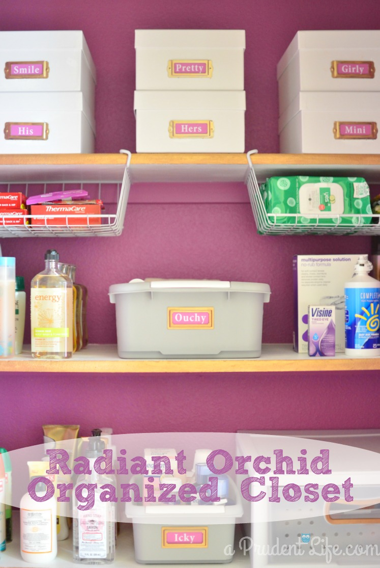 organized bathroom closet reveal - polished habitat