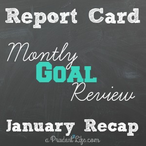 January Goal Review