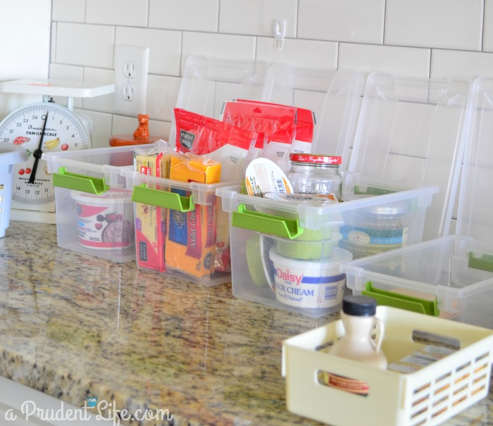 Organizing Fridge Contents into Bins