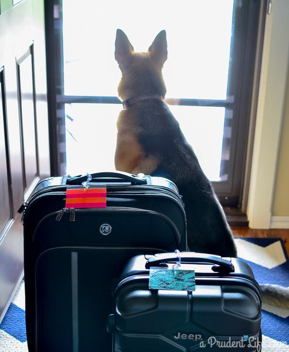 Luggage Tags-23