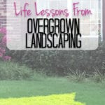 Lessons from Landscaping {The Blog Post That Wasn't Supposed to be a Blog Post}
