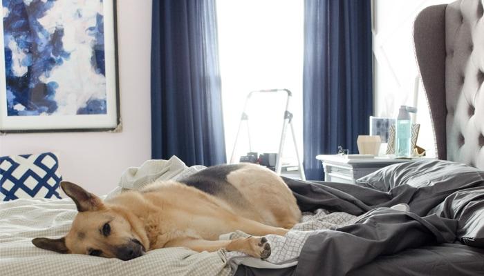 Glam Master Bedroom by Polished Habitat