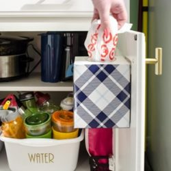 Tips to Control Cabinet Chaos