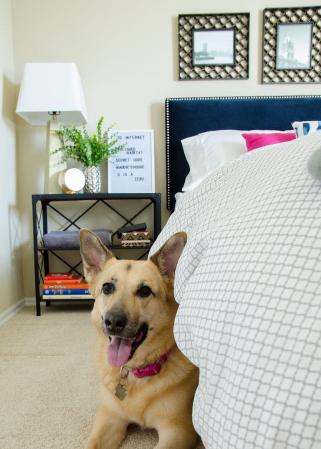 Keep pets out of your guest room before arrival and during the guest stay. Click for more tips for hosting overnight guests.