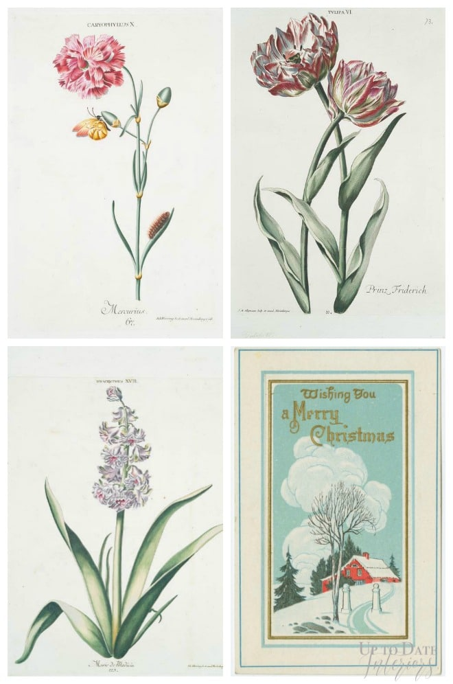 Free botanical and vintage postcard art