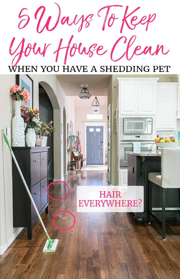 5 Tips To Having a Clean House When You Have A Shedding Pet