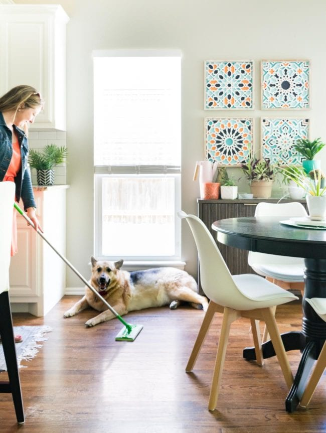 Keeping A Clean House When You Have A Shedding Dog Polished Habitat