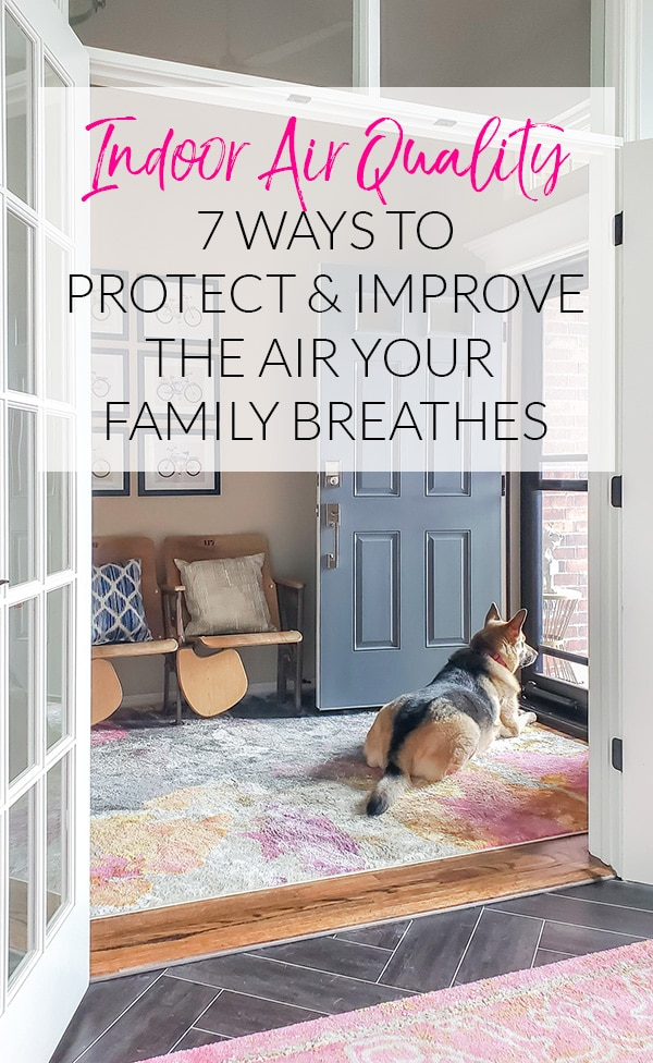7 Ways to Protect & Improve the Air Your Family Breathes