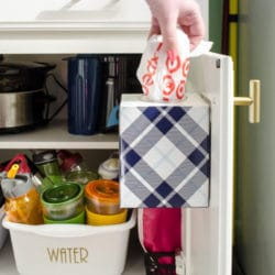 Storage for Plastic Grocery Bags on the Back of a Cabinet Door using a Kleenex Box