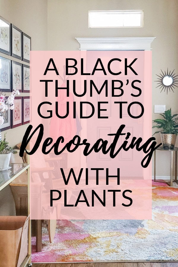 A Black Thumbs Guide to Decorating with Plants